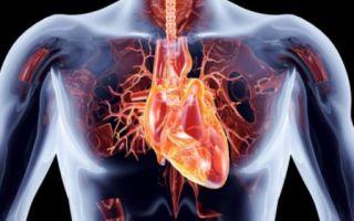 Причины, диагностика и лечение атеросклеротического кардиосклероза