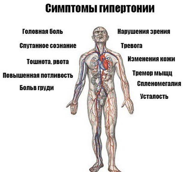 Основные симптомы гипертонии